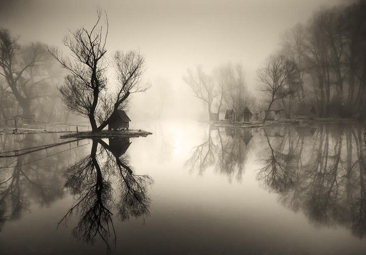 through the misty air II. by Adam Dobrovits on 500px
