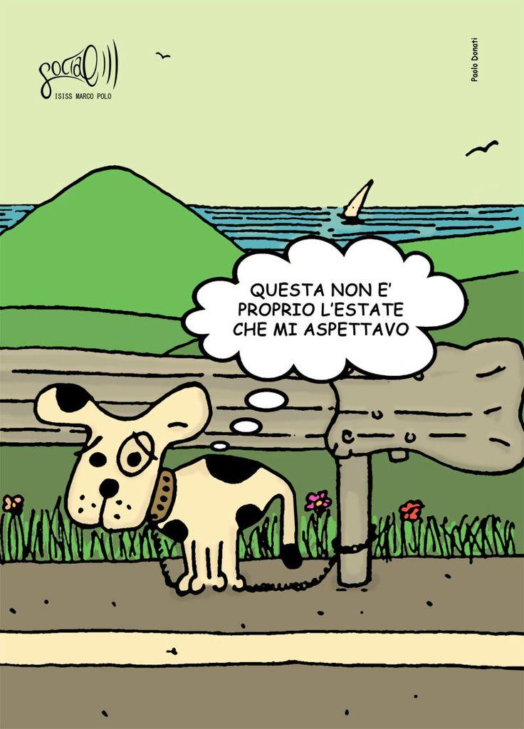 Campagna sociale contro l'abbandono degli animali. Paolo Donati, 2012