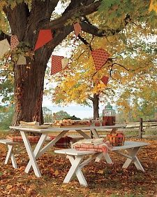 I absolutely LOVE this. Kites hanging from the trees. Will do this for our annual October group hike at the metro park, we end it at the park with roasted hot dogs and smores. unique paper decor | DIY paper kites for unique party decor | Martha Stewart Living