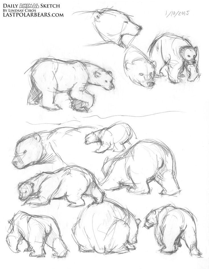 Daily_Animal_Sketch_174