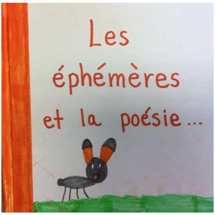1er cycle. Petit recueil collectif sur la poésie, inspiré de la collection «Clin d'oeil» des éditions Isatis!!