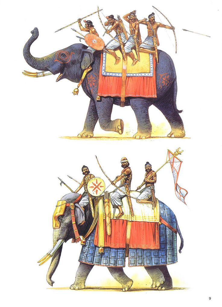 Peter Dennis - Elefantes de guerra indios de diferentes épocas