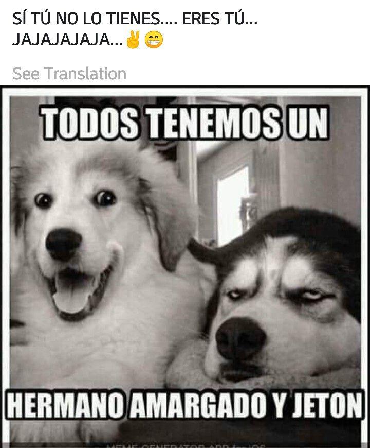 Todos Tenemos Un Hermano Amargado Y Jeton Si Tu No Lo Tienes Eres Tu Jajaja Funny Animal Pictures Funny Animals Cute Animals