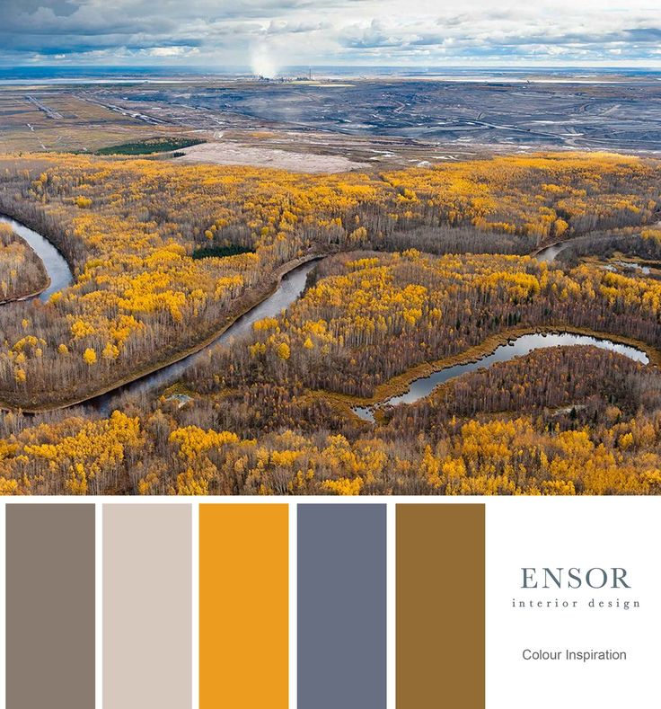 Natural tones. #nature #interiordesign #ensor #natural www.ensorinteriordesign.co.uk
