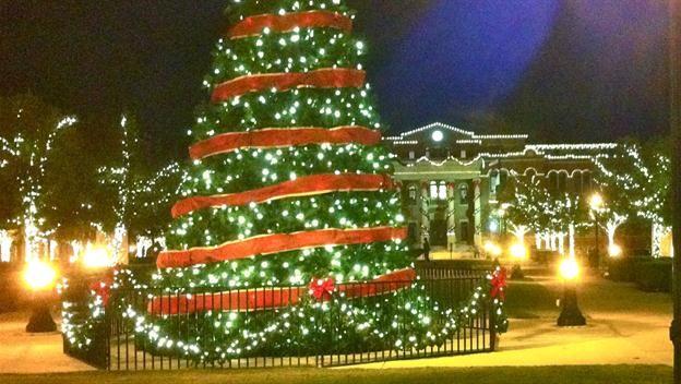 The Life of a Christmas Tree Video - History of Christmas - HISTORY.com