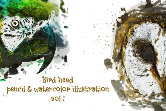 Bird Head Pencil & Watercolor vol 1 by wopras on @creativemarket