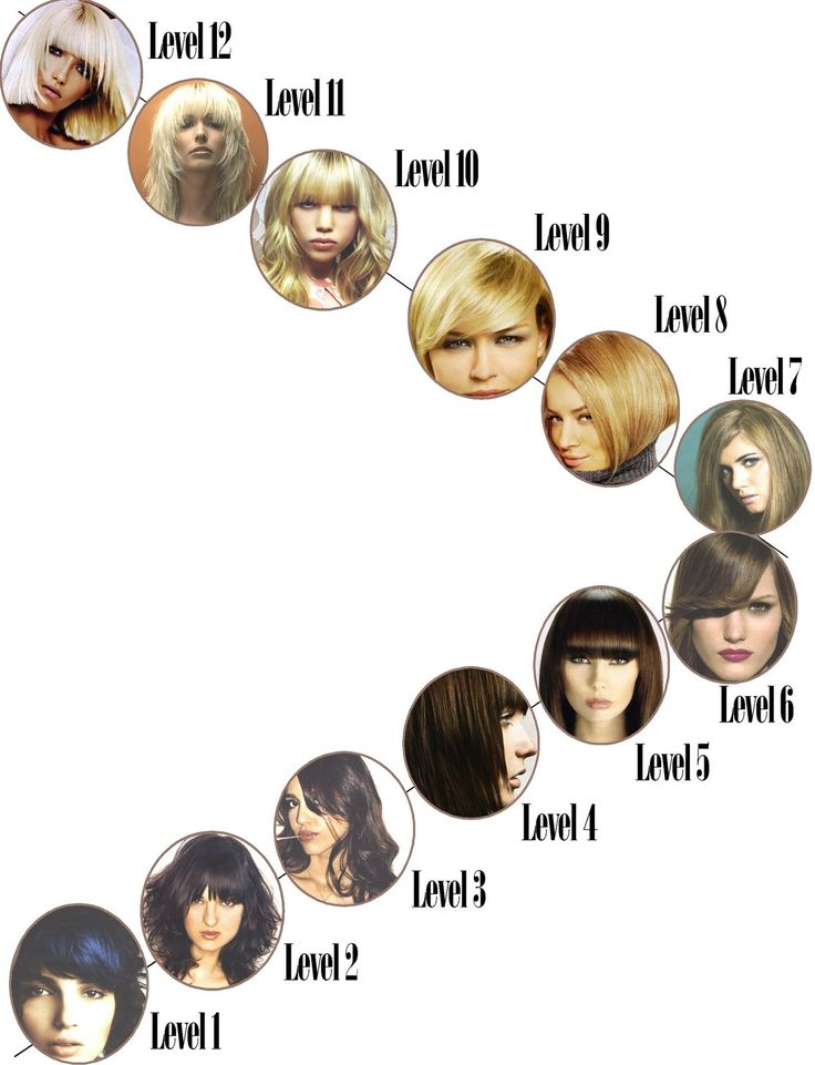 Hair levels  Easy way to look at it
