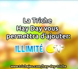 Nous vous présentons notre nouvelle application - Hay Day Triche. Cette application est conçue pour jouer Hay Day. Il fonctionne sur les appareils fonctionnant sous Android et iOS. http://trichejeu.com/hay-day-triche/