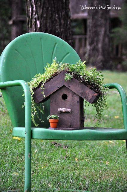 Rebecca's Bird Gardens: Living-roof Birdhouse ♥