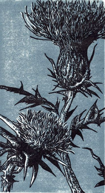 """Life Among the Thistles"" linoleum block print by Tyrus Clutter. Milk Thistle - herbs"