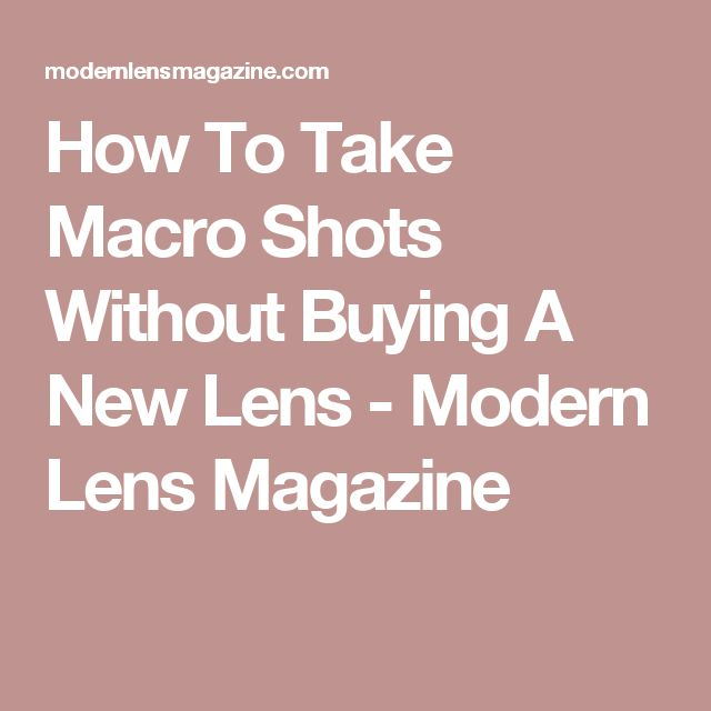 How To Take Macro Shots Without Buying A New Lens - Modern Lens Magazine