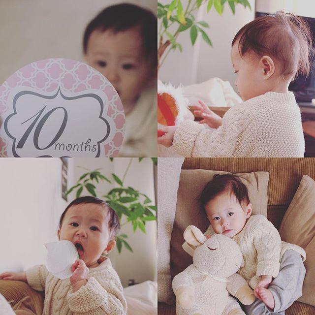 10ヶ月になりました。  最近はよくお喋りするように。 「マンマンマン!」ってよく言う。  家中荒らしまくりで家の中ぐちゃぐちゃ😣 ハイハイがすごい早くなった! どこまでも追いかけてくる💨 離乳食は相変わらずほとんど進んでない…。 そのうち食べてくれるかな(。´_`。) あと2ヶ月で1歳とか早すぎる!! 1歳になるまでに歩くかな?? #娘 #女の子 #baby #10ヶ月 #親バカ部  #instababy #eymwedding