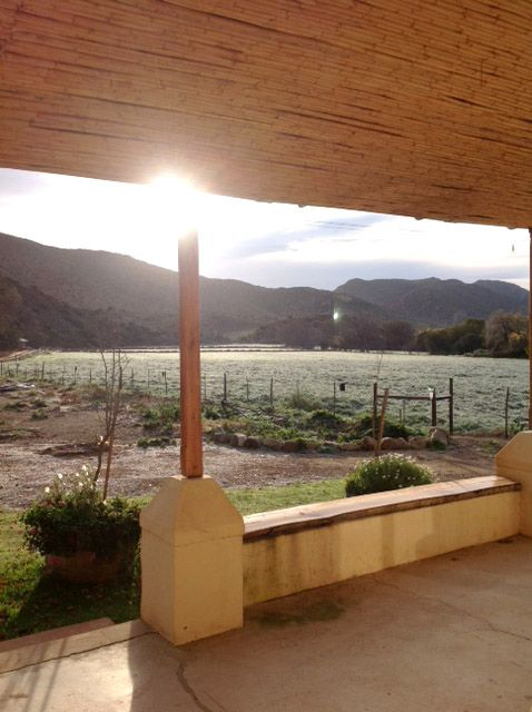 View from the Waenhuis Porch. Self-catering farm house at the Letterhuis Guest Farm