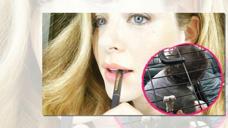 Haben Promi-Kinder einen neuen Trend entdeckt? Nachdem Ex-No Angels-Mitglied Sandy Mölling (36) erst kürzlich ein Bild ihres Sohnes Noah in einem Hundekäfig postete zieht Twilight-Darstellerin Rachelle Lefevre (38) jetzt nach! Auch ihr Spross fühlt sich am wohlsten hinter schwedischen Gardinen.   Source: http://ift.tt/2xfZinu  Subscribe: http://ift.tt/2qsx2iw No-Angels-Sandy: Auch Kind von Hollywood-Star im Käfig