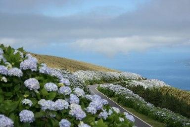 Faial Island landscape / Paisagem da ilha do Faial