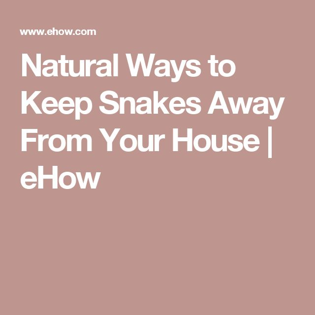 Natural Ways to Keep Snakes Away From Your House | eHow