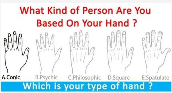 What Kind of Person Are you Based on your hand?