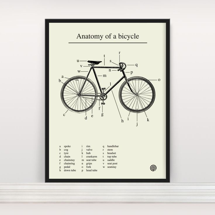 Anatomy of a bicycle!