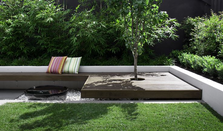 Clean lines and a simple palette of plants with different textures define this small courtyard garden. An outdoor room entertaining space and different levels provide easy living and a valuable asset that will grow and improve with time.