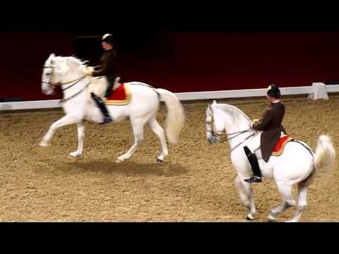 The Spanish Riding School of Vienna - YouTube