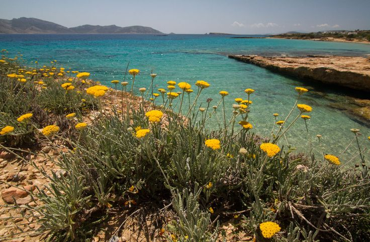 Spring in Koufonisi, best time to walk around the Greek islands