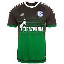 adidas FC Schalke 04 3rd Trikot /Jersey AA2442 grau-grün