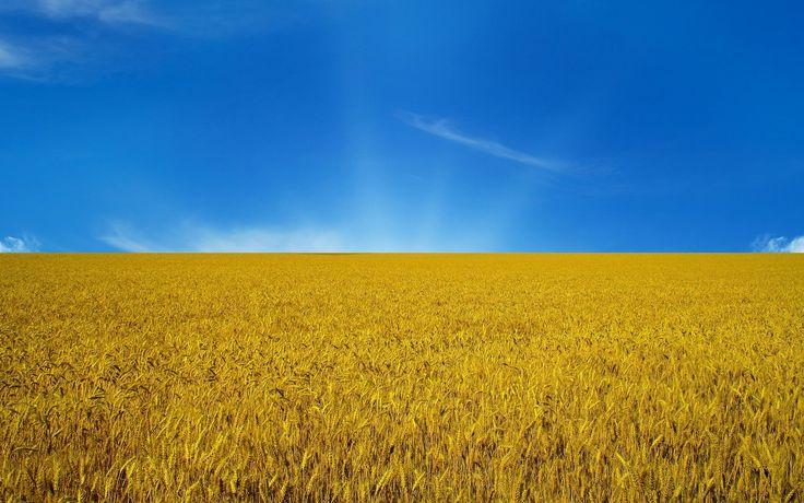 field of grein