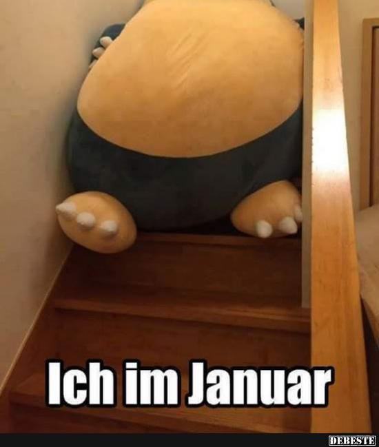 Ich im Januar..   Lustige Bilder, Sprüche, Witze, echt lustig