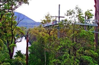 The cantilever at the Tahune AirWalk in the Huon Valley south of Hobart (via Geeveston).