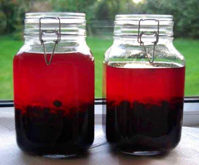Allotment Heaven: Sloe gin or vodka easy recipe