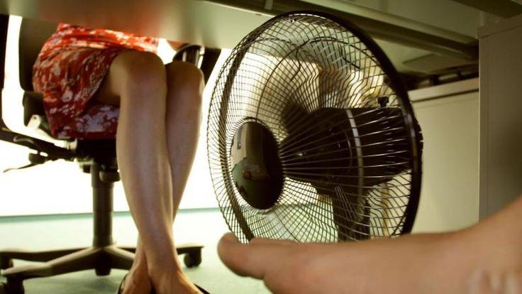 Chef in der Pflicht: Gibt es Hitzefrei bei der Arbeit?