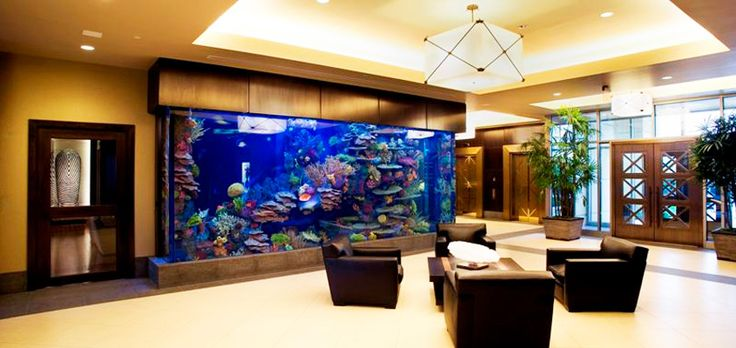 How cool would it be to have a big fish tank like this in for Fish tank house