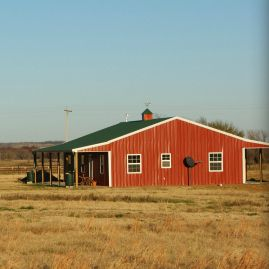Rural Homesteading: Four Things I Wish I Had Known
