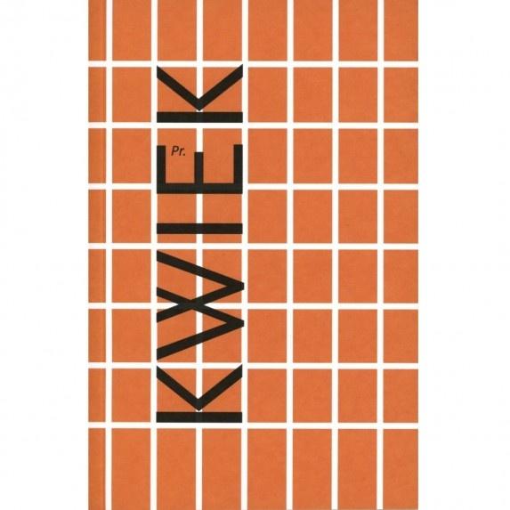 Katalog wydany w związku z wystawą / the catalouge has been published in connection with the exhibition: Przemysław Kwiek, Pomysły 1987 - 2012 / Ideas 1987 - 2012 // Galeria Labirynt, 2012