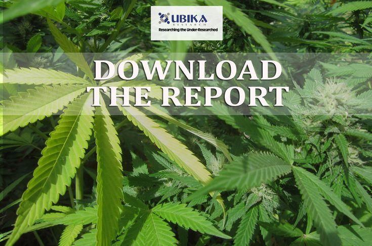 marijuana-bubble-report