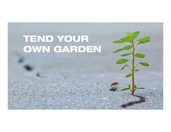 TEND YOUR OWN GARDEN - #TheCreatorWritings through Jennifer Farley