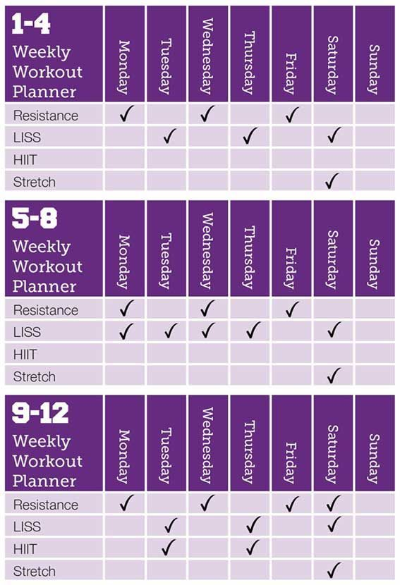 Image result for kayla itsines free do it yourself workout planner