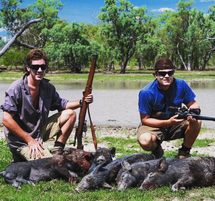 Throwback to a trip up in the NT where we helped the station owner control a few feral pigs on the property.  #hunt #hunter #pestcontrol #australia #NT #Northernterritory #oz #landdownunder #pigs #ferals #huntingworldwide #outdoors #adventure #photography #followforfollow #picoftheday #photooftheday http://misstagram.com/ipost/1543805554731707462/?code=BVssvj8DuxG