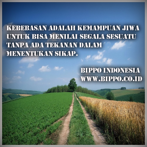 Image Result For Kumpulan Cerita Bijak Islami