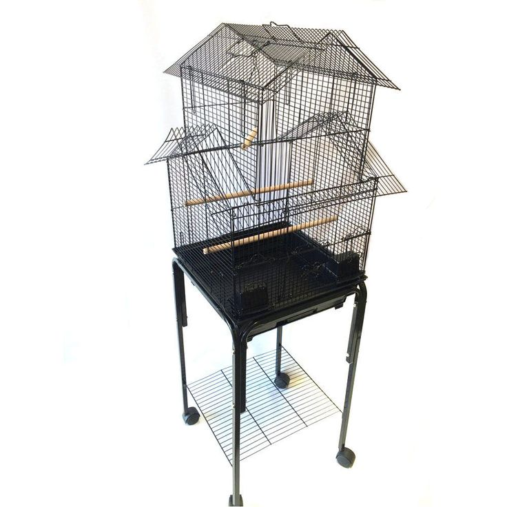 how to build an aviary for finches