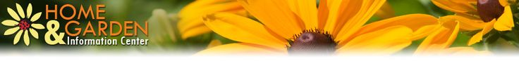 University of MD Extension - Home and Garden Information Center: lawn care, weed id, native gardening