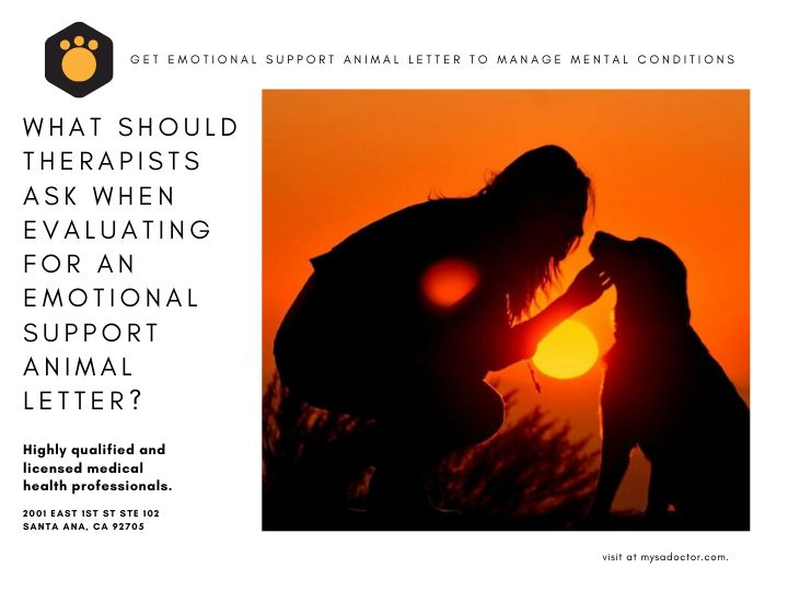 So what do therapists ask when evaluating for emotional ...