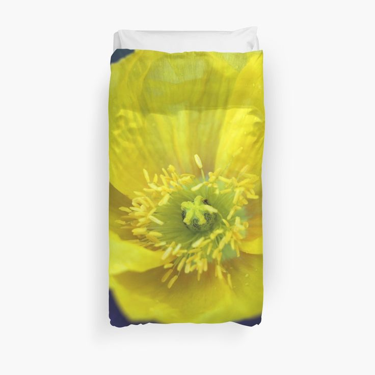 Keep SAD out of your winter by letting the summer flowers in!  Champagne Poppy Yellow duvet cover by Catherine Maughan