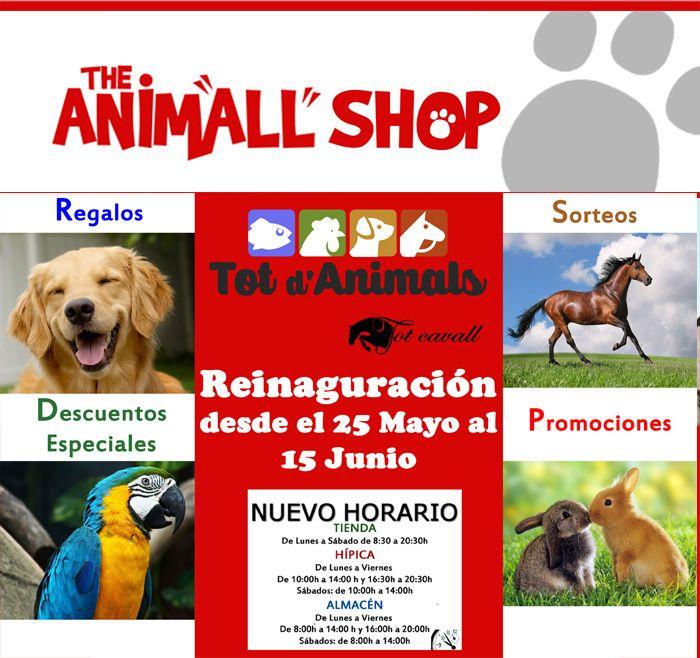 #mascotas #animalitos #pienso #hamster #perros #gatos #gosbi #royalcanin #tienda #online #love #divertido #risa #graciosos #naturaleza En: www.tiendaonlineparaanimales.com
