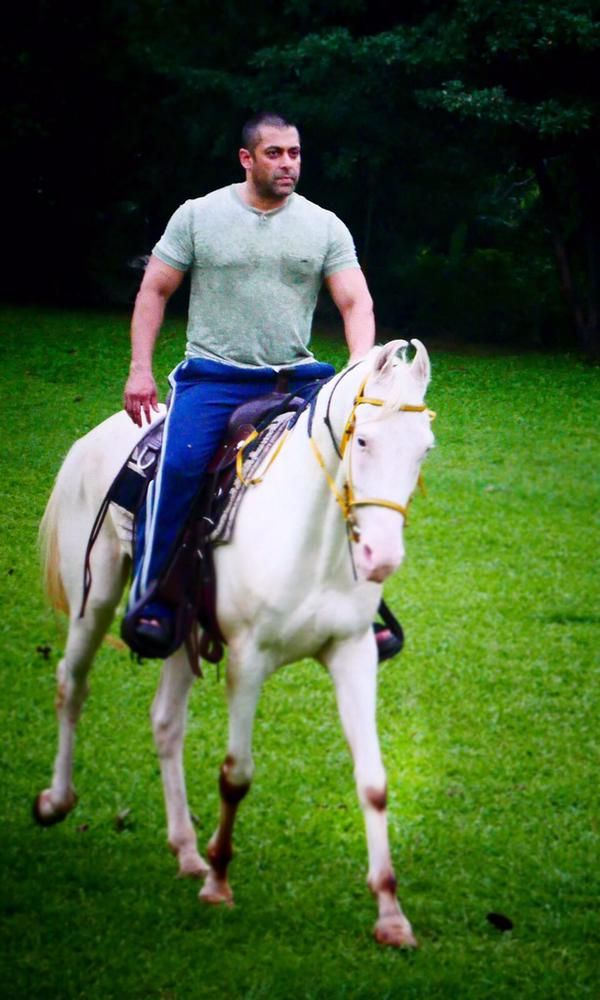 Spotted! - Salman Khan riding a horse at his Panvel farmhouse in Mumbai recently.