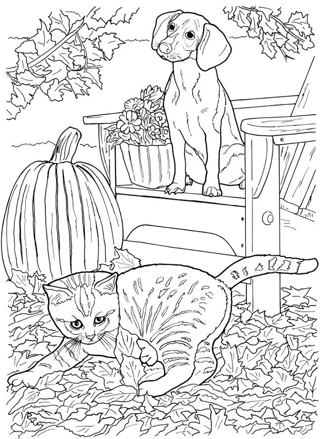 Free Coloring Pages Of Dogs And Cats : 500 best animal coloring images images on pinterest