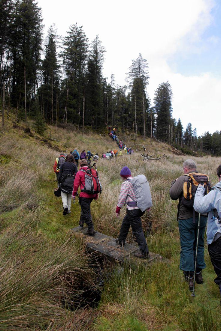 Hiking Leitrim
