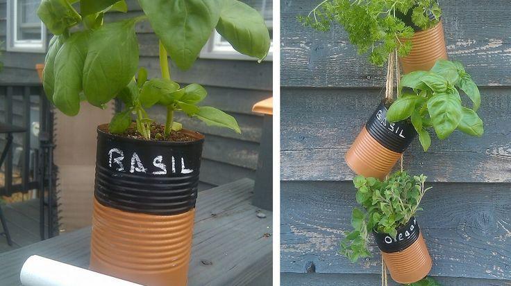boites de conserve jardinieres herbes aromatiques