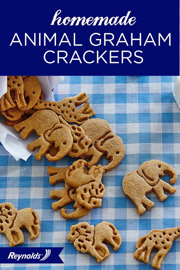Best 25 make your own crackers ideas on pinterest baked cracker homemade animal graham crackers solutioingenieria Choice Image