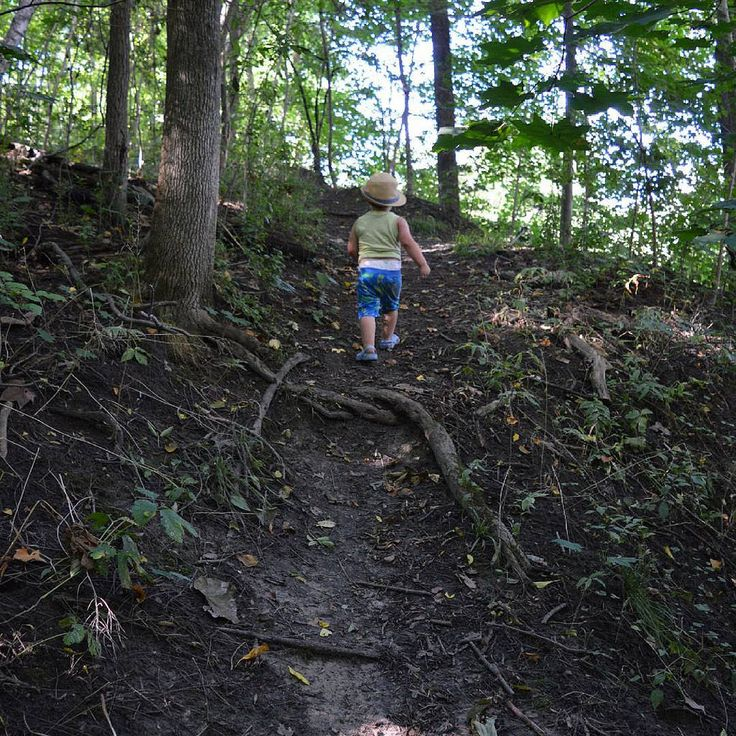 #hiking #walking #strolling #bighill #exercise #outdoors #outdoor #baby #preschooler #toddler #forest #brantford #ontario #canada #mountpleasant #brantcountyThese are my personal photos from Flickr!